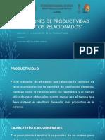 Definiciones de Productividad y conceptos relacionados.pptx