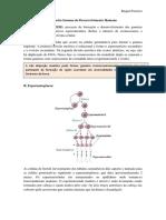 Resumo Embriologia Moore