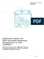 Deloitte_Deployment options EWM.pdf