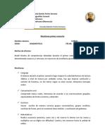 Informe Matias