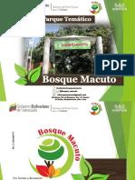 Catalogo Nuevo 2018-2019 - Bosque Macuto