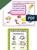 Uso de z y Su Plural