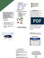 triptico BIOLOGIA