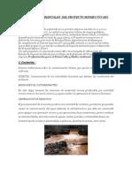 IMPACTOS AMBIENTALES  DEL PROYECTO MINERO TUCARI.docx
