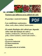 Informacion Del Cafe
