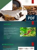 Diapositivas Cafe Autoguardado