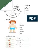 senses.pdf