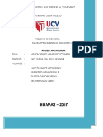 Trabajo Final Aplicacion de La Metodologia Pmi(2)