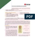 Simular Curvas BJT (3).pdf
