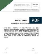 11.- ANEXO GNR