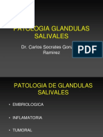 glandulas salivales Actual.ppt