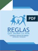 Reglas que Salvan vidas Controles Críticos de Terreno.pdf