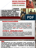 02-Proceso de Amparo - Exponer - Andia