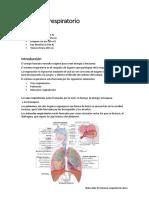 Naturales El Sistema Respiratorio