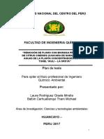 Plan de Tesis UNCP _quimica