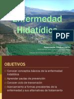 hidatidosis 2015.pdf