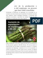El Comercio de La Producción y Exportación Del Espárrago