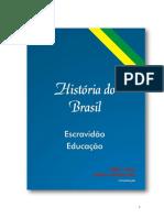 19.HISTÓRIA DO BRASIL.pdf