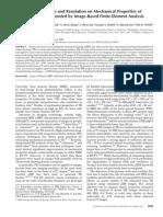 Wehrli Noise Resolution Trabecular Bone Mechanical Analysis