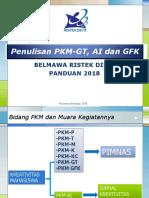 PKM GT - AI -GFK Panduan 2018.pdf