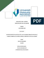 IQRA PROJECT.pdf