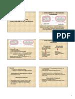 14_energiaatalakito_organellumok_0.pdf