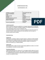 INFORME_PEDAGOGICO_FINAL.docx