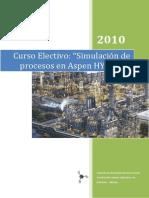Curso Electivo Simulación.pdf