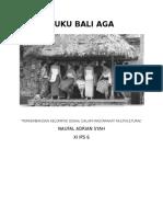Suku Bali Aga