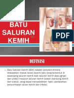 dokumen.tips_batu-saluran-kemih-ppt.pptx