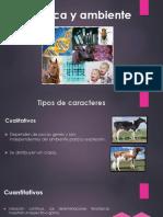 Genetica y Ambiente (4to Periodo) y Mejoramiento 2017