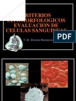 CRITERIOS CITOMORFOLOGICOS 1.pdf
