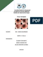 Esofagitis