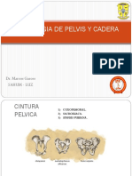 Tema 5. Semiologia de Cadera