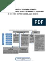 el procedimiento ordinario agrario esquema 1.docx