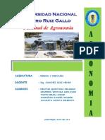 RIEGOS-Y-DRENAJES-TRABAJO (1).docx
