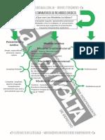 Cuadro Comparativo Modelos Juridicos