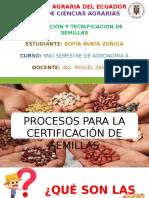 procesos para la certificación de semillas