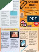 Boletín F y A 33