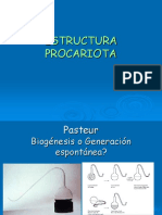 1- Estructura Procariota
