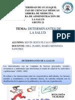 DETERMINANTES-DE-LA-SALUD-DIAPOSITIVAS.pptx