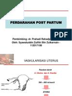 Syawal Referat HPP