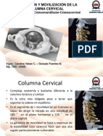 Movilización de columna cervical