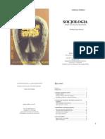 Anthony Giddens - Socjologia