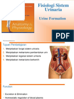 K1 - fisiologi sistem urinaria blokNU-15.pptx
