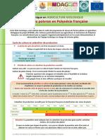 FTC Poivron PF