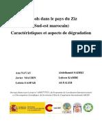 Les_sols_dans_le_pays_du_Ziz_Sud-est_mar.pdf