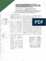 Directiva 001 2018 Matematica Opt DRE ANCASH