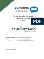 Plan de Negocios Coaching