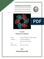biosintesis de aminoacido.docx